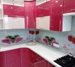 Кухни из пластика и жидкого камня с фотопечатью